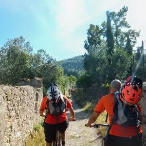 Escursioni in MTB sulla Via Francigena | da 1 a 7 gg.