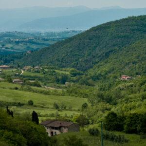 La valle di Cintoia